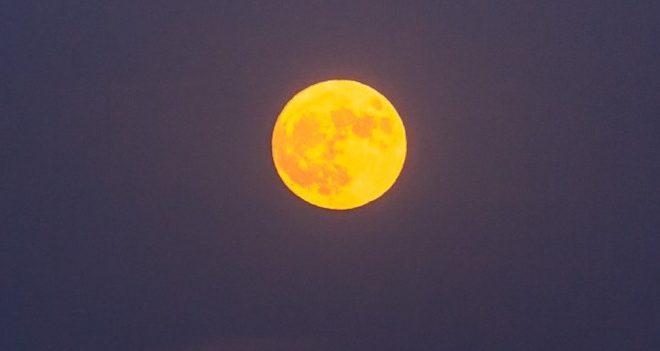中秋の名月 お月見