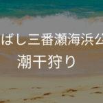 ふなばし三番瀬海浜公園 駐車場 車