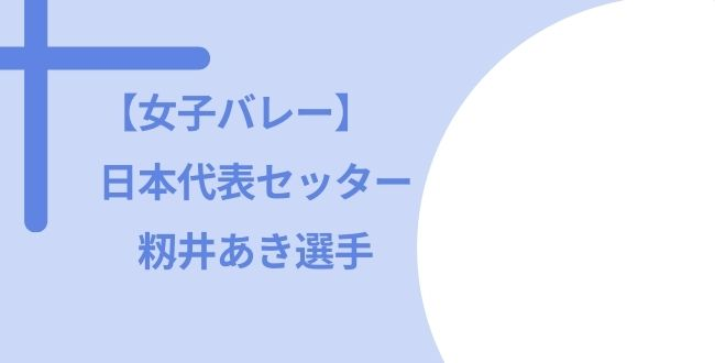 女子バレー 籾井あき ハーフ 国籍